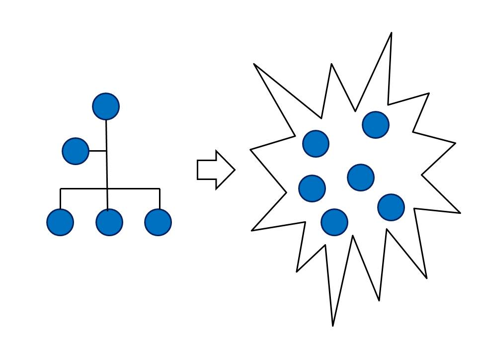 verschil organigram en organogram